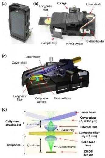 Edwebstudio androidemicroscopio